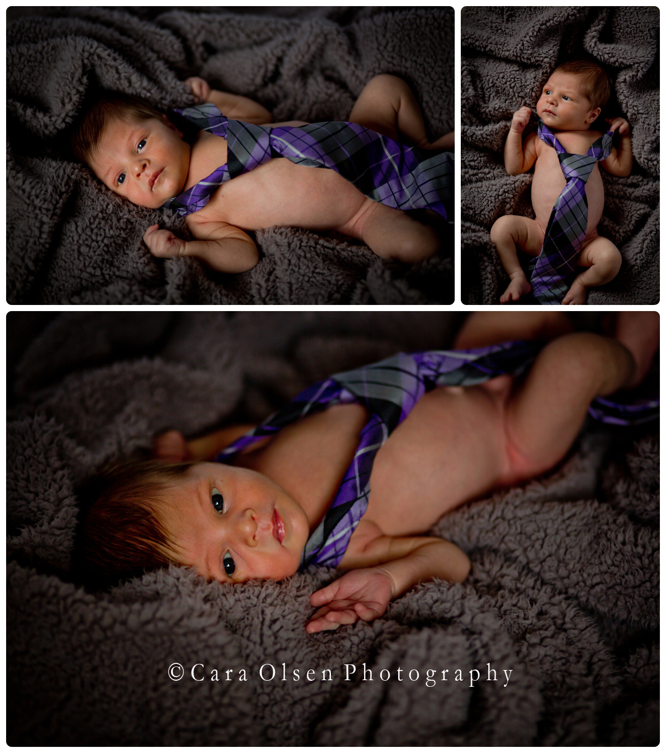 Capital District Newborn Photographer